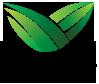 شعار تجديد - tajdeed logo