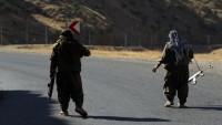 مقتل-قيادي-بارز-في-حزب-العمال-الكردستاني-بقصف-تركي-شمالي-العراق