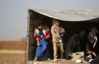الصحة-العالمية:-وفاة-29-رضيعا-بمخيم-في-الحسكة-جراء-البرد