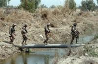 الأمن-العراقي-يعلن-القبض-على-13-إرهابيا-في-نينوى