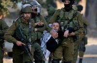 الاحتلال-يعتقل-14-فلسطينيا-خلال-حملة-اعتقالات-في-الضفة