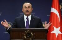 تركيا-تلوح-بمواصلة-نبع-السلام-إن-لم-يتم-تنظيف-المنطقة