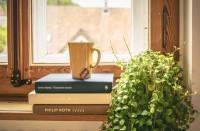 تعرف-على-النباتات-التي-تنمو-داخل-المنزل-وفوائدها