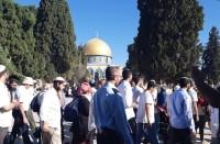 مستوطنون-يقتحمون-الأقصى-والاحتلال-يحول-القدس-لثكنة-عسكرية