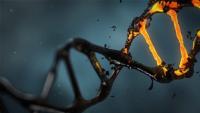 العلماء-يطورون-أداة-جديدة-في-مكافحة-السرطان-والفيروسات